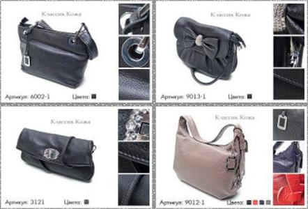 На какие сумки следует обратить внимание в сезоне 2010-2011 года.